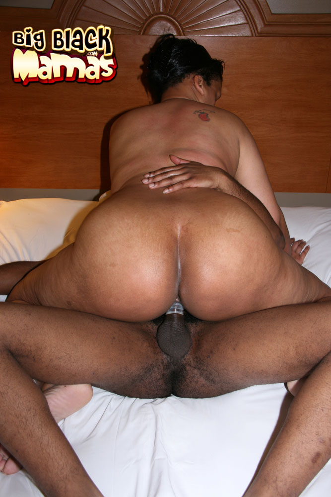 Think, bbw big black naked mamas final